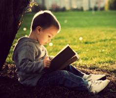 Como Se Concentrar Para Ler